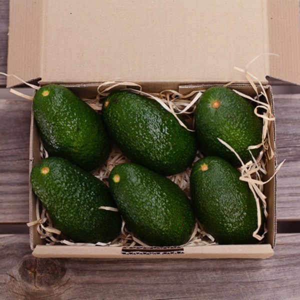 The 6 Pack from The Avo Club